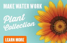okanagan water management and conservation plant-button
